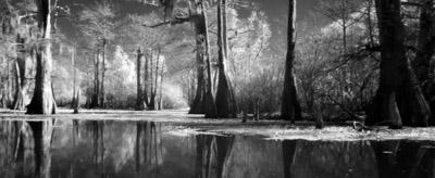 TORONTO 38 - Visitors: Godfrey Reggio + Philip Glass