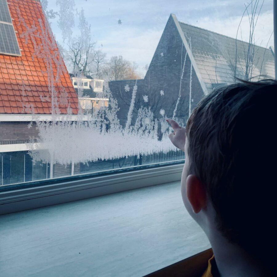 Mijn leven in foto's #136 - Sneeuwbloemen