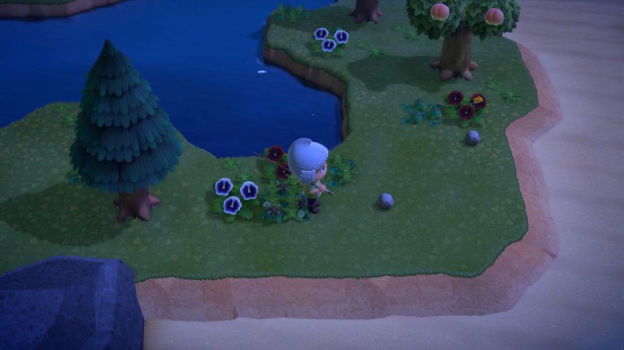 Animal Crossing - New Horizons - avond