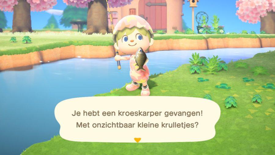 Animal Crossing - New Horizons - kroeskarper gevangen