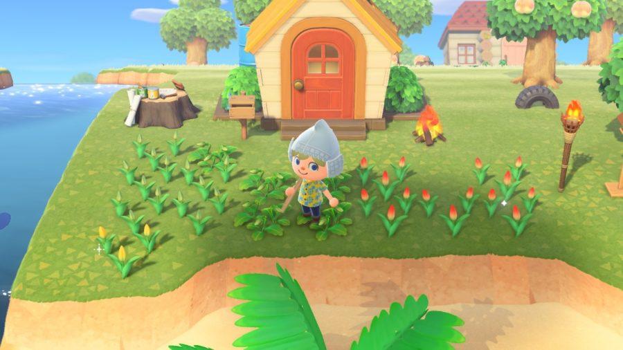 Animal Crossing - New Horizons - planten