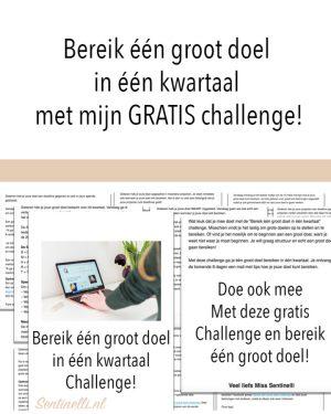 Bereik één groot doel in één kwartaal met mijn GRATIS challenge!