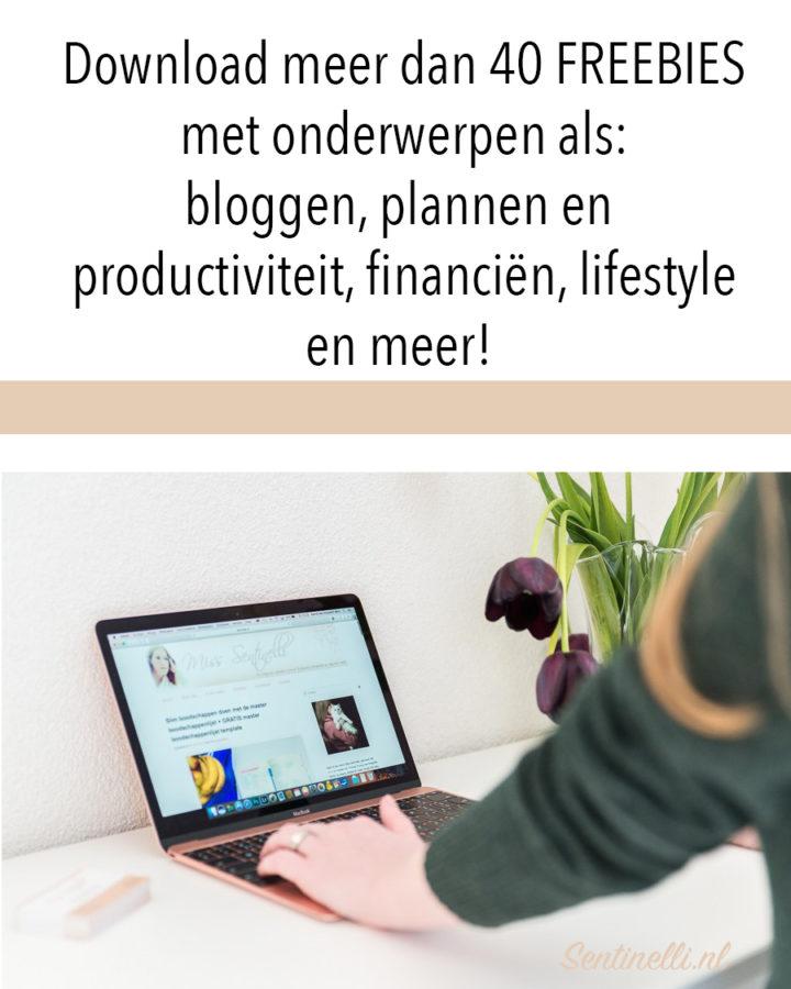 Download meer dan 40 FREEBIES met onderwerpen als- bloggen, plannen en productiviteit, financiën, lifestyle en meer!