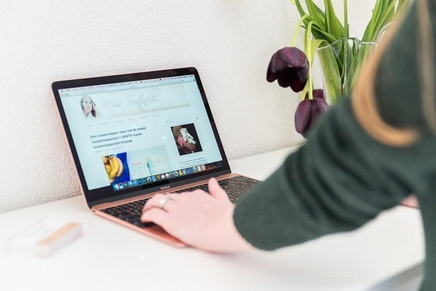Hoe ik in decemeber & januari 1.847,13 Euro (+ 125 Euro aan barterdeals) verdiende met bloggen en werk als Virtual Assistant