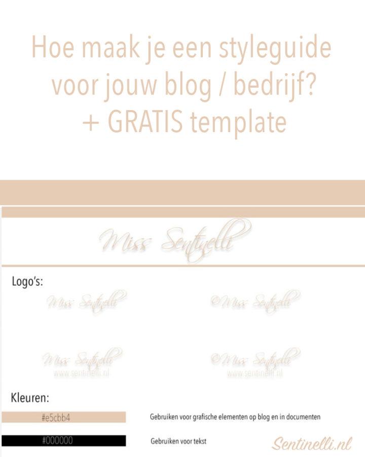 Hoe maak je een styleguide voor jouw blog bedrijf + GRATIS template