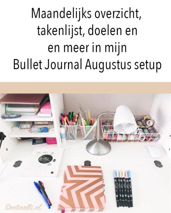 Maandelijks overzicht, takenlijst, doelen en en meer in mijn Bullet Journal Augustus setup