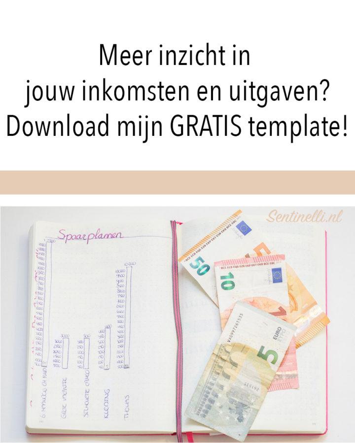 Meer inzicht in jouw inkomsten en uitgaven? Download mijn GRATIS template!