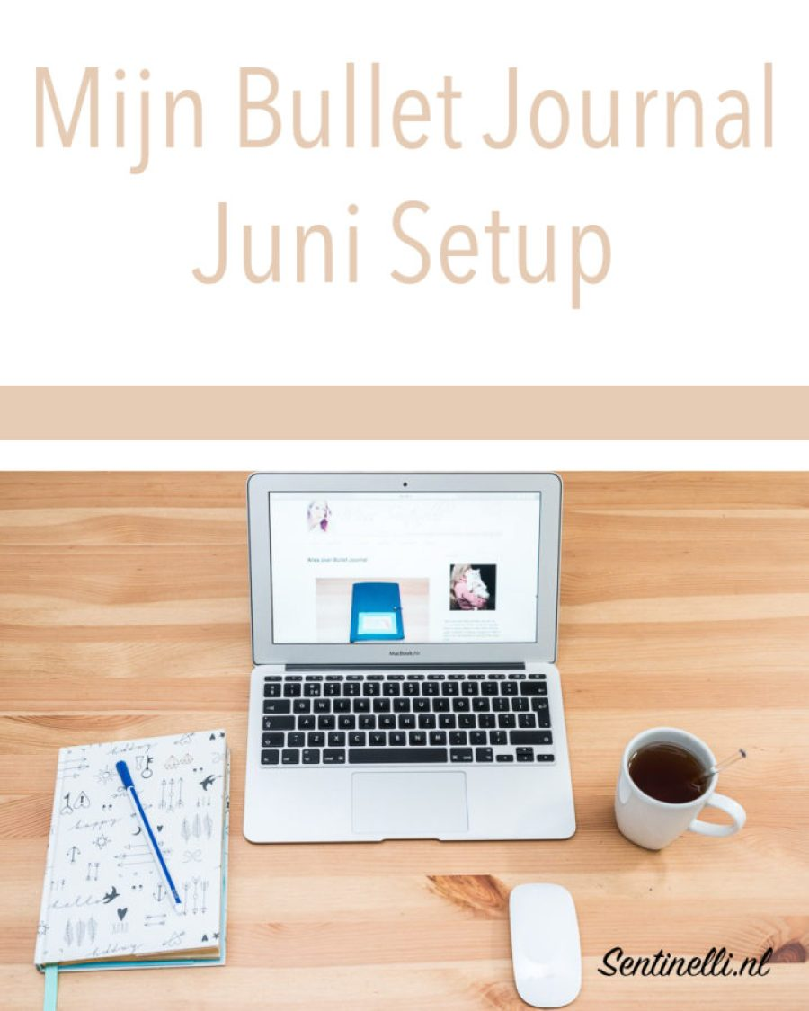 Mijn Bullet Journal Juni Setup