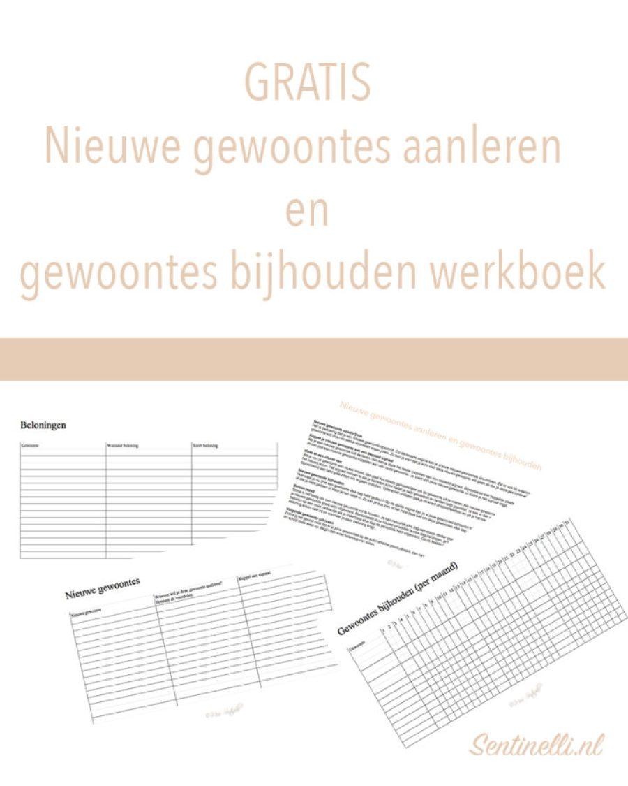 Nieuwe gewoontes aanleren en gewoontes bijhouden werboek
