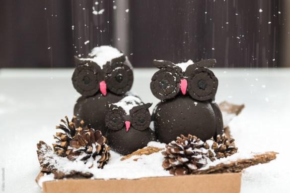 Leuke en grappige zoekresultaten #31 - sneeuwproblemen, volwassenheid en donna