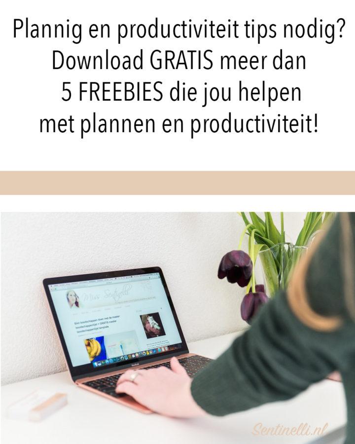 Plannig en productiviteit tips nodig? Download GRATIS meer dan 5 FREEBIES die jou helpen met plannen en productiviteit!