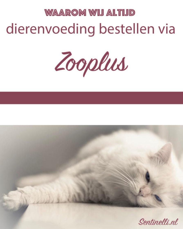 Waarom wij altijd dierenvoeding bestellen via Zooplus