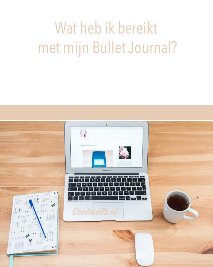 Wat heb ik bereikt met mijn Bullet Journal