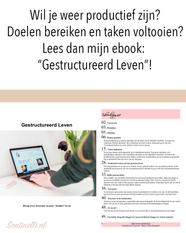 """Wil je weer productief zijn? Doelen bereiken en taken voltooien? Lees dan mijn ebook- """"Gestructureerd Leven""""!"""