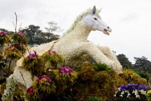 Panagbenga 2011: Baguio City In Full Bloom