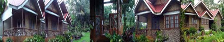 Lanzones Cabana