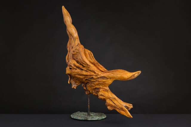 Matilde Mancini, le ali della materia