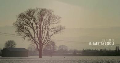 Giovedì 22 marzo alle 19, proiezione del filmMa l'amore c'entra? di Elisabetta Lodoli allaSala Zavattini.Fondazione AAMOD in via Ostiense 106 - Roma (Centrale Montemartini).