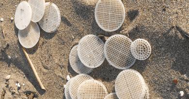 """Benvenuti, Presidente Ecoitaliasolidale dopo sopralluogo """"subito interventi a Torvaianica per erosione spiaggia e presenza dischetti plastica in mare."""