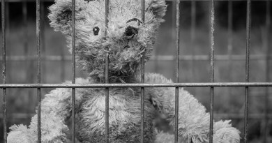 """'A Roma, Insieme-Leda Colombini',Giovanna Longo, bambini in carcere """"un sit-in silenzioso e rispettoso davanti la Camera dei deputati per sollecitare una opportuna riflessione""""."""