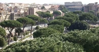 Primo Regolamento del Verde e del Paesaggio Urbano di Roma Capitale. Raggi, risultato storico. Dotiamo la città di uno strumento fondamentale e strategico