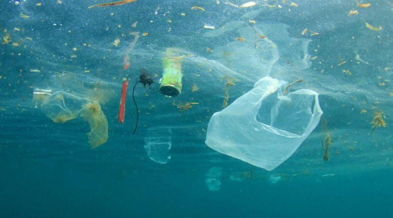 """""""Oggi giornata mondiale per ricordare la fragilità della natura chiediamo provvedimenti concreti per scongiurare un 2050 con in mare più plastica che pesci"""""""