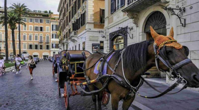 Firmata dalla sindaca Virginia Raggi una nuova ordinanza che vieta la circolazione dei veicoli a trazione animale, le Botticelle, nelle giornate caratterizzate dalla presenza di ondate.
