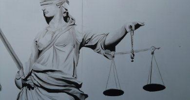 L'avvocato di Pinocchio di Simona Giannetti per la webradio SenzaBarcode si parla di Giustizia, Stato di Diritto, Costituzione ...