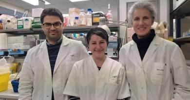Clinical Cancer Research pubblica i risultati di uno studio congiunto Italia- Canada finanziato da Fondazione AIRC. Tumori testa-collo alpelisib.