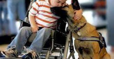 Fino a quando non ho frequentato assiduamente il mondo SuperAbile ho sempre pensato che gli unici animali indispensabili alla vita di una persona fossero i cani-guida per i ciechi.