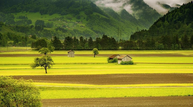 """""""Aprire un'azienda agricola"""" vi aspetta, con l'autore Fabrizio Santori, sabato 1 dicembre alle ore 21 a #6SenzaBarcodeOnline."""