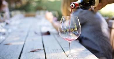 L'evento Roma Hortus Vini torna dal 25 al 27 giugno. Ecco il programma del festival dei vitigni autoctoni italiani