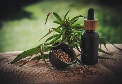 Da Consulcesi un corso per formare e aggiornare gli operatori sanitari sui molteplici benefici e limiti delle terapie a base di cannabinoidi. Foto di Julia Teichmann da Pixabay