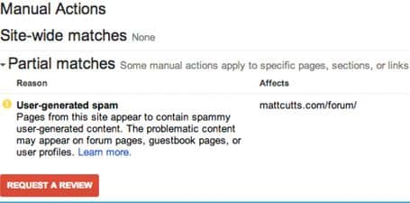 عقوبة جوجل Partial Match
