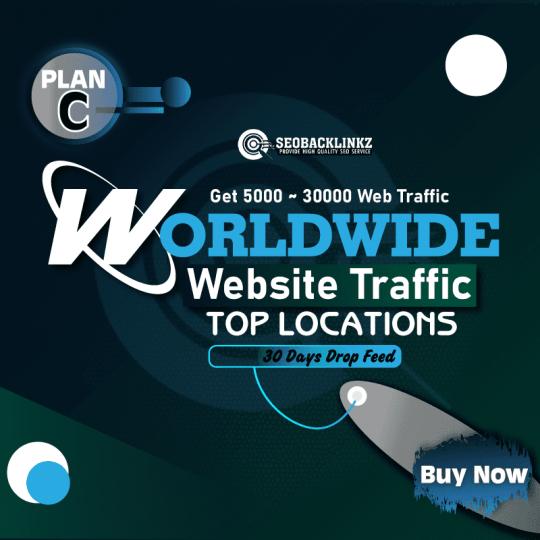 Worldwide Website Traffic