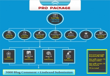 Best Link Pyramid Service with social signals to Rank on Google