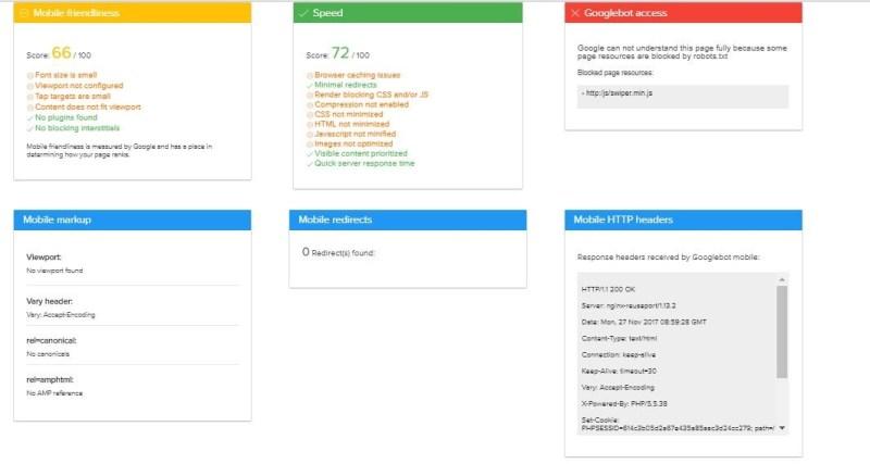 Mobile SEO Issues Tool 2.jpg