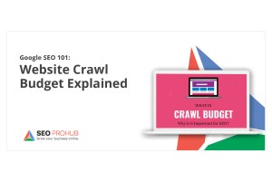 Google SEO 101: Website Crawl Budget Explained