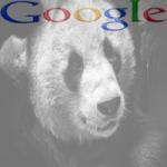 Algoritmo Google Panda 4.1 ya en funcionamiento
