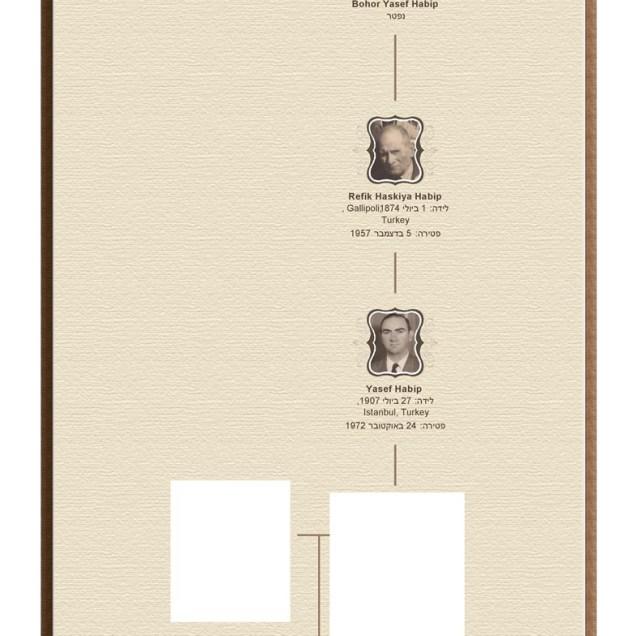 עץ-משפחת-חביב-מגליפולי