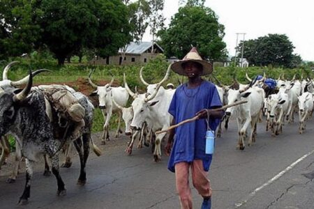 Why Southwest ban on open/night grazing may not work – Prof. Isaac Albert