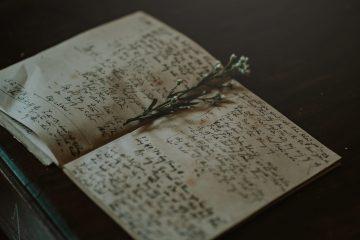 da vinci notebook sepia flora