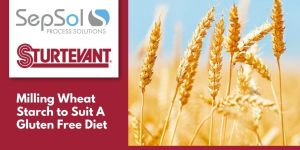 How Wheat Starch Can Fit Into A Gluten Free Diet