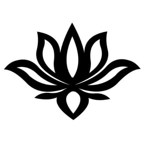 Fleur de lotus signification - fleur de lotus symbole