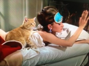 ホリーと猫