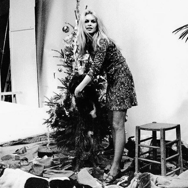 "Brigitte Bardot (1934 - ) decorates her Christmas tree. BB is most famous for her starring role in the sexually charged 1957 drama ""And God Created Woman."" Bardot starred in 47 films, most of them terrible. But she was probably the best known sex symbol of the 50s and 60s. Now, 80, Bardot is quite public in her opposition to the Islamization of France."