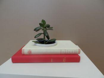 Livre jardinière Au détour des pages
