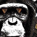 Infitnite Monkey Logo