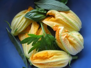 squash+blossoms+with+fresh+herbs
