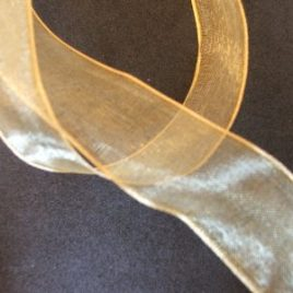 Wired Pale Gold Organza